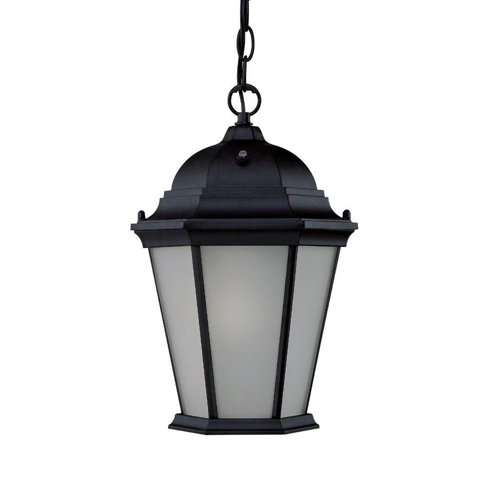 Acclaim Lighting Richmond ES 1 Light Outdoor Hanging