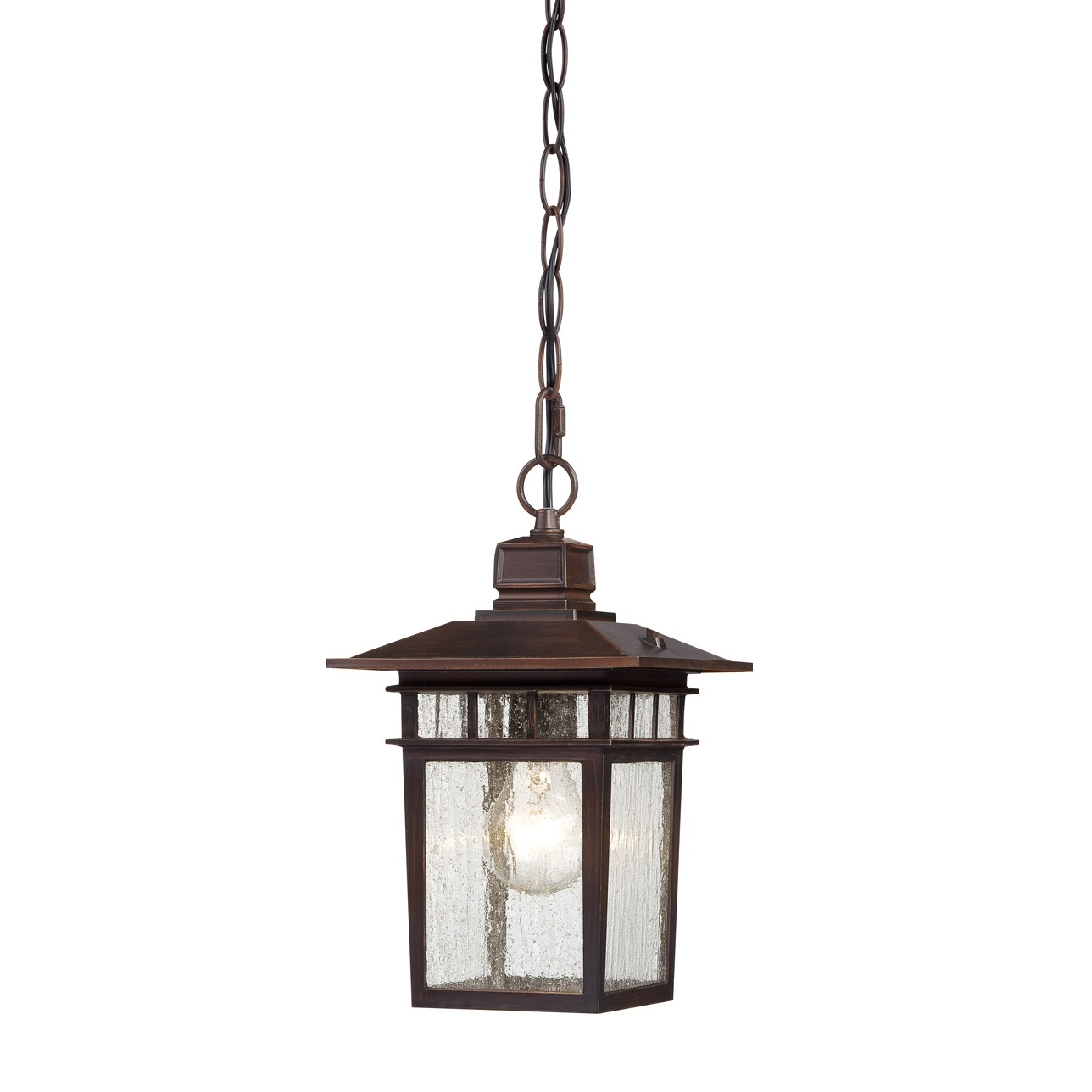 Nuvo lighting cove neck 1 light outdoor hanging lantern in for Hanging outdoor light fixtures
