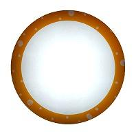 LED Ceiling Light CL01LED-OR